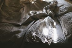 Sunny crumpled bed sheets - secret linen store on Me & Orla