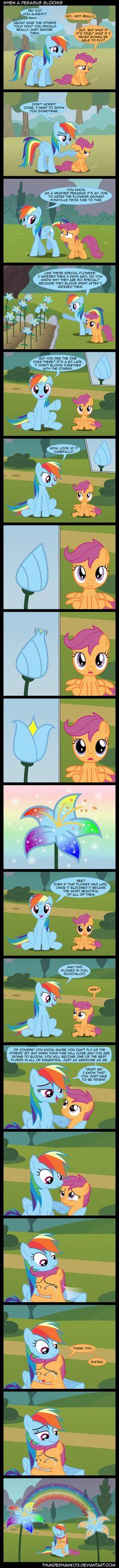 When+a+Pegasus+Blooms+by+Thunderhawk03.deviantart.com+on+@deviantART