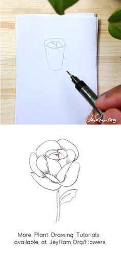How to Draw a Rose : Step by Step for Beginners — JeyRam Art Roses Drawing Tutorial, Flower Drawing Tutorials, Rose Tutorial, Leaf Drawing, Floral Drawing, Drawing Flowers, Beginner Drawing, Drawing For Beginners, Flower Step By Step