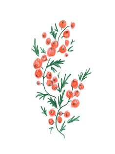 Sprig by Liana Jegers on Artfully Walls