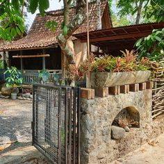 Image may contain: plant and outdoor Bali Architecture, House Architecture Styles, Indonesian Decor, Bali House, Building Concept, Bamboo House, Garden Cafe, Bamboo Design, Cabins And Cottages
