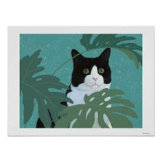 Black and White Cat with Green Eyes Láminas en AllPosters. Frida Art, Cat Plants, Cat Posters, Dibujos Cute, White Cats, Black Cats, Eye Art, Cat Drawing, Illustrations