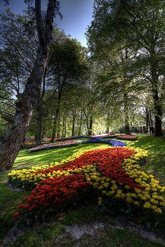 Colours of Keukenhof Gardens, Lisse, Netherlands