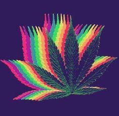 Weed, Marijuana, Cannabis, and Pot Weed Wallpaper, Iphone Wallpaper, Weed Backgrounds, Medical Marijuana, Psychedelic Art, Dope Wallpapers, Smoke Weed, Weed Art, Smoking Weed