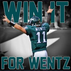 132 Best My Birds Images On Pinterest In 2019 Fly Eagles Fly Go