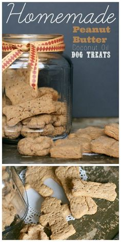 Homemade Dog Treats Recipe | These dog treats are made with peanut butter and coconut oil, your dog will love these! Click the photo for the recipe on TodaysCreativeLife.com