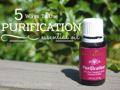 5 Ways To Use Purification Essential Oil