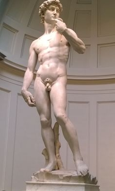 14 Oct 2014: David, my second-most-favorite statue ever (ditto probably lots of other folks, too). In the Accademia in Firenze. This was the second time I saw David up close and personal. Still brought tears to my eyes.