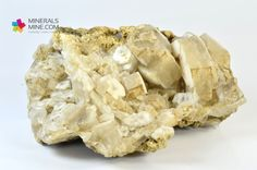 Apatyt na matriksie - szczotka wspaniałych jasnożółtych pięknie wykształconych kryształów. topowa szczotka o bogatym rysunku kryształów.     Pochodzenie: Skardu, Pakistan  Wymiary: 10.5 x 9.5 x 5.0 cm  Wymiar kryształu: 3.5 (szerokośc) x 1 cm ( grubość)  Waga: 510 g