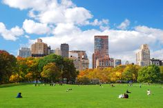 The Great Lawn! Imagine just laying here... #greatlawn #centralpark #newyork #zhotelny
