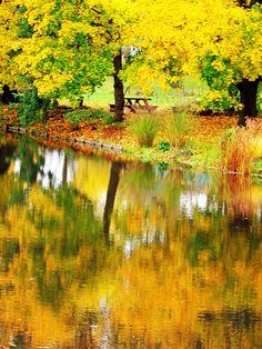 Yellowo reflection by annkagarise on Etsy, $12.00