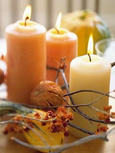Branches of bittersweet are an inexpensive way to dress up a holiday table. More #Thanksgiving decorating ideas: http://www.bhg.com/thanksgiving/indoor-decorating/easy-centerpieces-for-thanksgiving/?socsrc=bhgpin110112bittersweetwithcandles#page=12