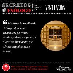 La importancia de la ventilación para conservar vinos