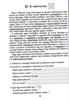 MESÉLŐ SZÖVEGÉRTÉSI MUNKAFÜZET 2. OSZTÁLY - tanitoikincseim.lapunk.hu Rage, Teaching, Education, Dyslexia, Learning, Educational Illustrations, Teaching Manners, Studying