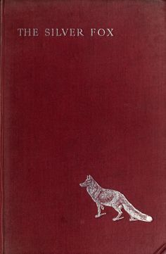'The Silver Fox' by Martin Ross [pseud.] and E.Œ. Somerville. Lawrence & Bullen; London, 1898