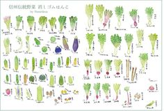 68 eraser stamps of Traditional vegetables in Nagano prefecture