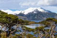 Fiordi cileni