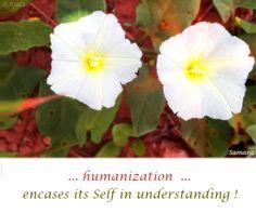 ... #humanization  ... encases its #Self in #understanding !