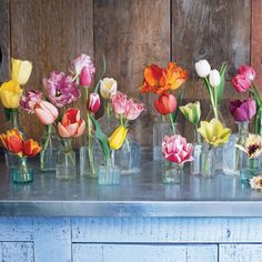 For a striking show, group tulips singly in small, clear vases. #gardening #flowers #tulips