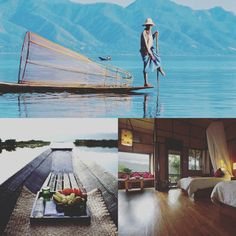 💕 #TravelTuesday #Myanmar #Honeymoon Edition:  5) Inle Princess Resort. One of the best #ecotourism resorts on Inle Lake. Home to 267 bird species + the rare #Saruscrane! 46 wooden stilt-raised chalets w/private balconies. Lake and mountain views. Enjoy a variety of international & local ethnic cuisines, #yoga or #meditation spa experiences, #boating excursions, shopping & #birdwatching. {Sources: @ScottDunn_Travel, @TripAdvisor,  @SecretRetreats & Inle Princess Resort}  #PutARingOnIt 💎💍