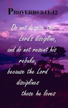 Proverbs 3:11-12