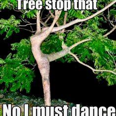 Funny dancing tree