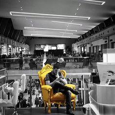 El chico del sillón dorado. #diariodeuninstagramer