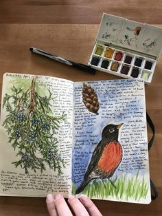 Nature Journaling is fun for kids and adults too. It doesn't have to be complicated! Whether you want to improve your drawing skills in a sketchbook or write about what you are experiencing in a pocket journal, this guide will help you get started today! Nature Study, Nature Drawing For Kids, Nature Journal, Garden Journal, Nature Sketch, Drawing Journal, Nature Artists, Journal Aesthetic, Scrapbook Journal