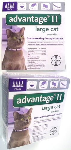 Animals Cats: New Bayer Advantage Ii (4 Pack) For Large Cats Over 9 Lbs Genuine Epa Approved -> BUY IT NOW ONLY: $34.95 on eBay!