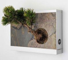 盆栽を壁掛けるプランター?「Wall Bonsai Planter」 | Q ration(キューレーション) | QUAEL bags | クアエル