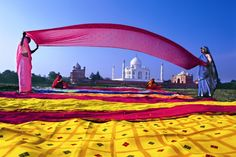 drying saris in India within sight of the Taj Mahal