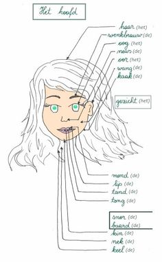 Uitgebreide woordenschat : het hoofd (het lichaam) ~ Synoniemen: het hoofd = de kop het lichaam = het lijf - Collectie 'Woordenschat & oefeningen Nederlands' : https://plus.google.com/u/0/collection/IecmgB