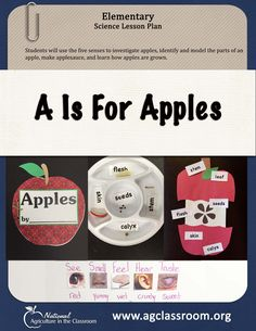 This elementary science lesson plan teaches students how apples are grown, how to use the 5 senses, and to identify and model the parts of an apple.