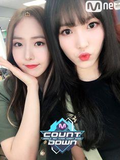 SinB and Yuju