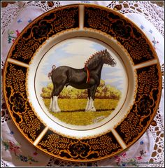 Rare set of vintage fine china dinner plates by PoshandSeductive