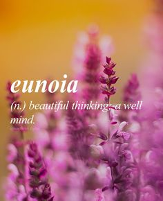 Eunoia is the shortest English word containing all 5 main vowels. Greek origin