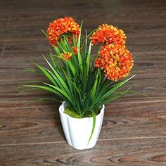 XICHEN Artificial Potted Plant Hydrangea 10Inch Orange *** Want additional info? Click on the image. (This is an affiliate link) #DecorativeAccessories