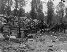 Battle of Albert. Dump of empty ammunition boxes. A small quantity of the total used by one British Division in the bombardment of Fricourt. A horse in the background has a protective headwear.