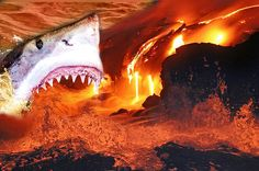 Artist's impression of a volcano-dwelling shark