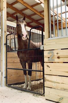 There's plenty of different horse stalls to choose from at RAMM. Piece together your horse stalls à la carte to your horse's personality! We can help you get started today 📞800-826-1287 #rammprojects #rammstalls #diy #dreambarn #horses #equestrian #barnideas #rammfence #essex #swinggate #horsestalls #horsestable #horsestallideas