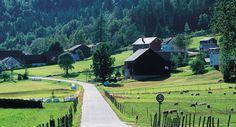 Triathlon w Norwegii i rolnictwo - Triathlon, Golf Courses, Sports, Painting, Hs Sports, Triathalon, Painting Art, Paintings, Sport