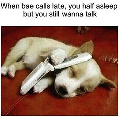 18 Times Animals Had To Deal With Relationship Issues (Memes) - Relationship Funny - 18 Times Animals Had To Deal With Relationship Issues (Memes) The post 18 Times Animals Had To Deal With Relationship Issues (Memes) appeared first on Gag Dad. Funny Relationship Memes, Relationship Issues, Cute Relationships, Bf Memes, Funny Boyfriend Memes, Memes Humor, Girl Memes, Funny Relatable Memes, Funny Posts