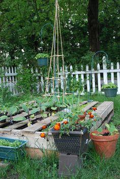 my pallet garden!