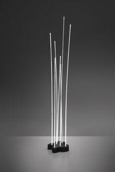 Reeds-Artemide-Klaus Begasse