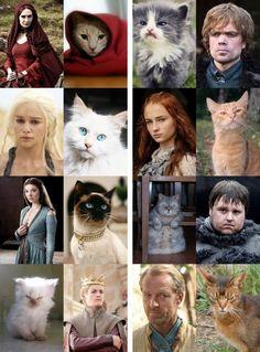 Si los personajes de Juego de Tronos fueran gatos...