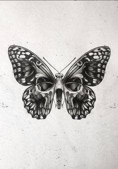 Beautiful skull, butterfly artwork - Dark / Black and white butterfly skull art. - Beautiful skull, butterfly artwork – Dark / Black and white butterfly skull artwork by our frien - Monarch Butterfly Tattoo, Simple Butterfly Tattoo, Butterfly Artwork, Butterfly Drawing, Butterfly Tattoo Designs, Traditional Butterfly Tattoo, Moth Drawing, Tattoo Traditional, Neo Traditional