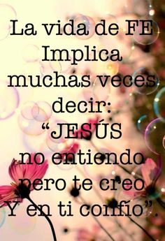 """A life of Faith implies having to admit: """"JESUS, I do not understand but I believe and trust in YOU!"""""""