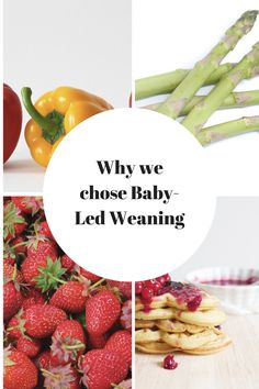 Why we chose Baby Led Weaning.