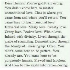 Dear Human....