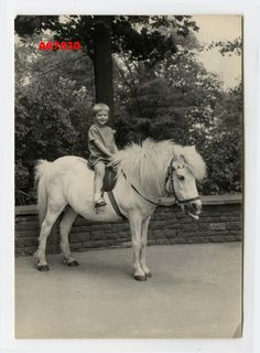 Other Collectible Contemporary Photos Vintage Children Photos, Vintage Pictures, Farm Kids, Pony Rides, All The Pretty Horses, Horse Art, Cowgirls, Animals For Kids, Vintage Photographs